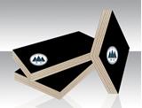 图片 黑膜清水模板