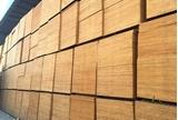 图片 建筑木模板